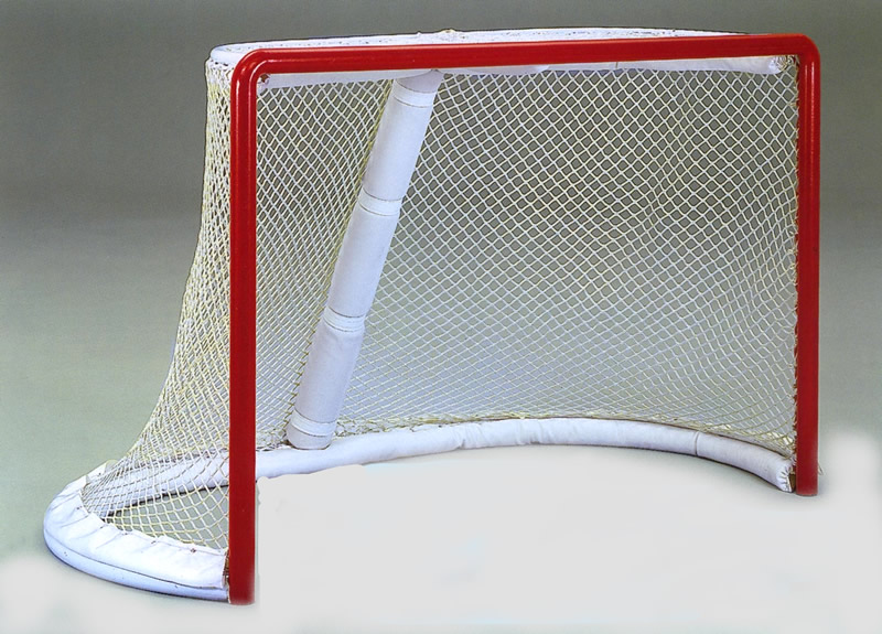 professional hockey goal
